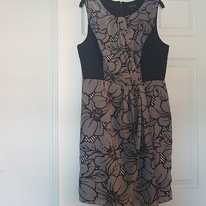 The Limited size 8 black and white floral dress